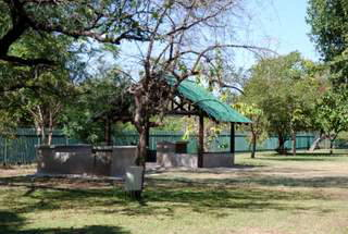 Picture (c) BeeTee - Vic Falls Restcamp and Lodges